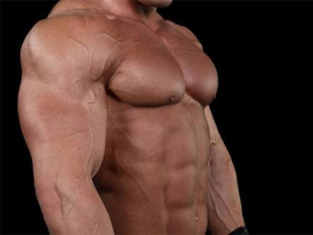 Want'56 inch chest? 3 easy and best exercises to build-up