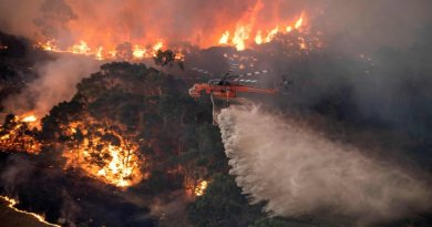 Know About Australia's Out of Control Fires are Giving No Indications of Halting