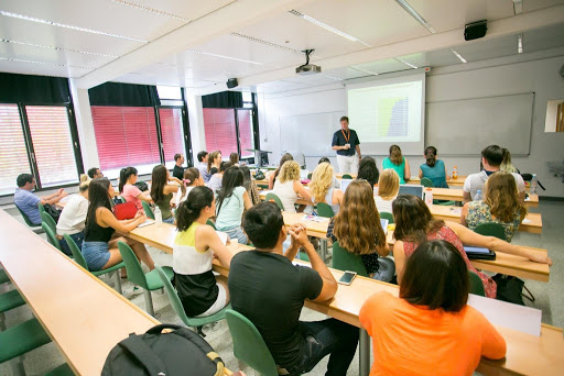 Best small business ideas-Academic Courses