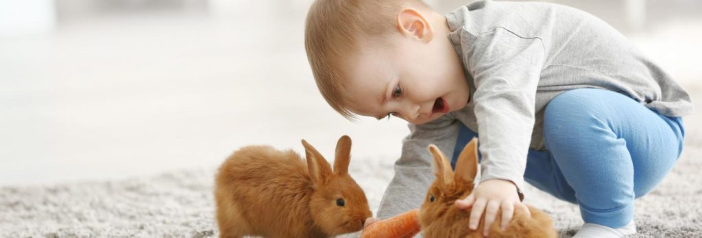 Easter Photoshoot- baby and rabbit