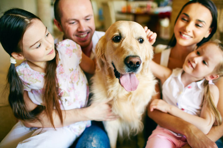 Things To Know Before Getting Your First Puppy; Suitable for your lifestyle