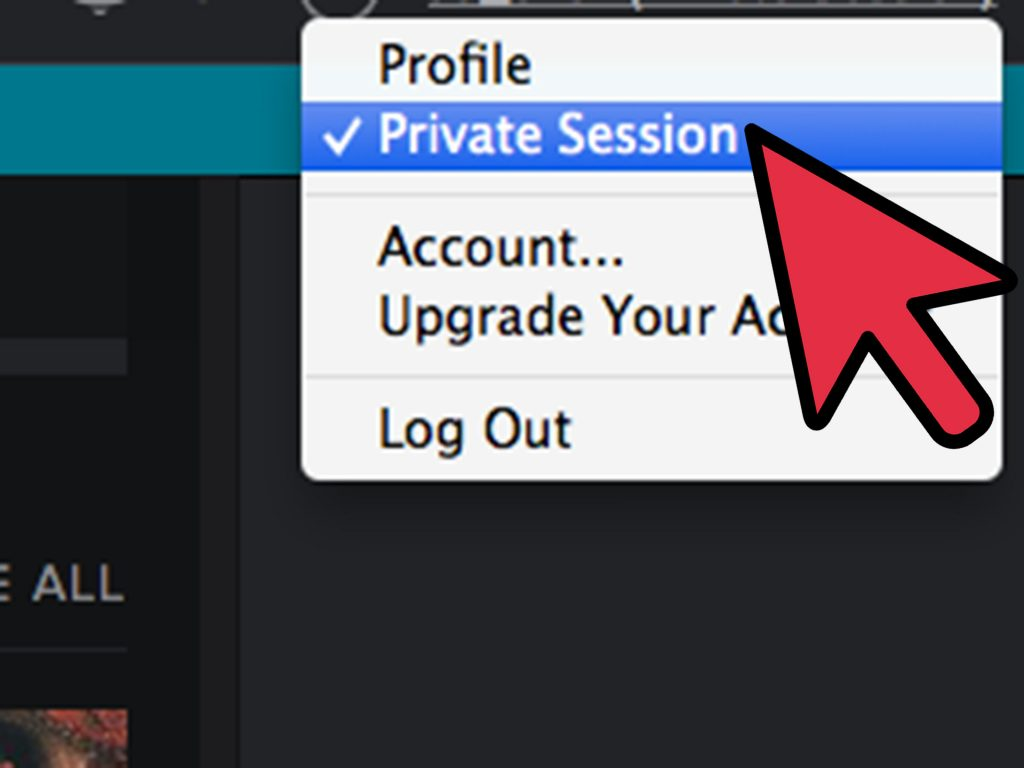Hidden Spotify Features ; Enable Privacy Mode