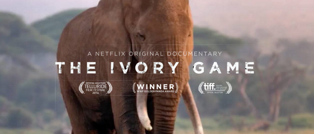 Wildlife and Nature Documentaries To Watch - The Ivory Game