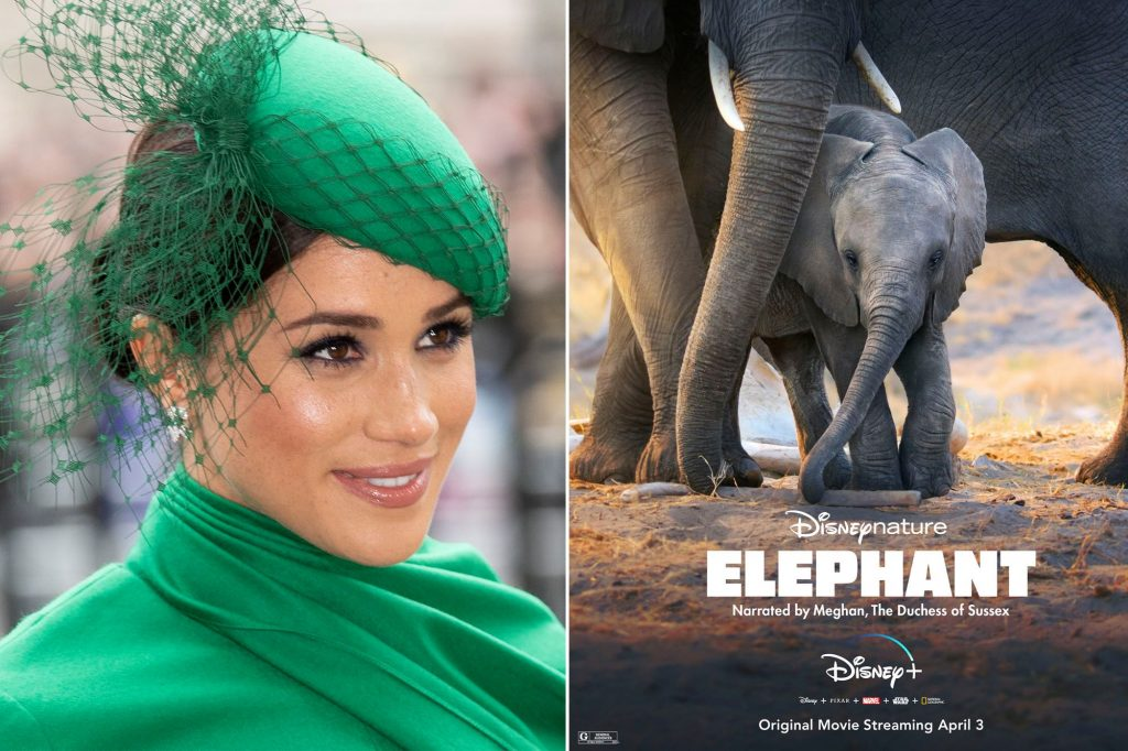 Wildlife and Nature Documentaries To Watch - meghan-markle-elephants