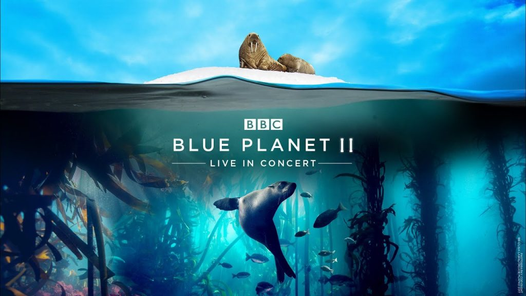 Wildlife and Nature Documentaries To Watch - the blue planet