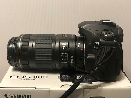Best Cameras for Vlogging and Streaming Under $500 - Canon EOS 80D