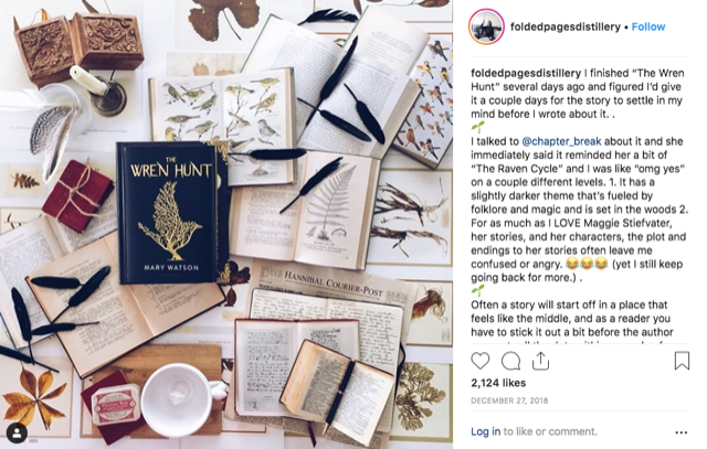 Earn Money From Instagram By Writing - Book Review