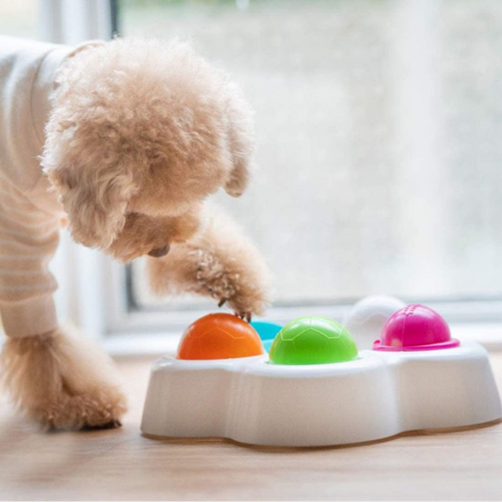 Soft Chew Toys For Dogs; Interactive Puzzles