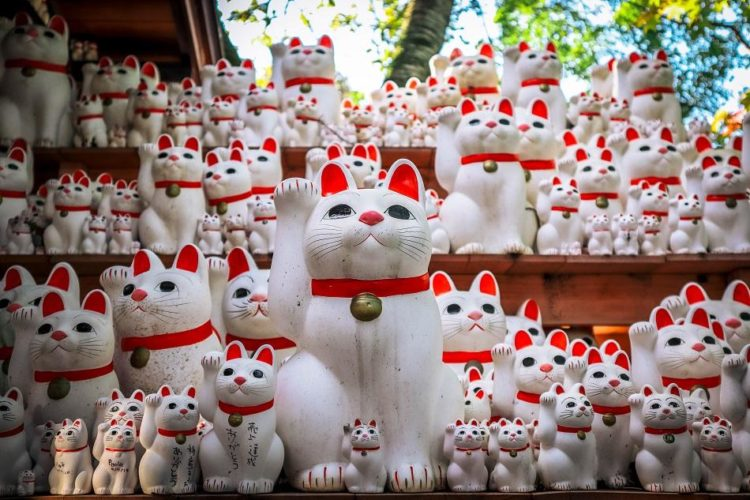 History Behind The Popular 'Waving Lucky Cat'