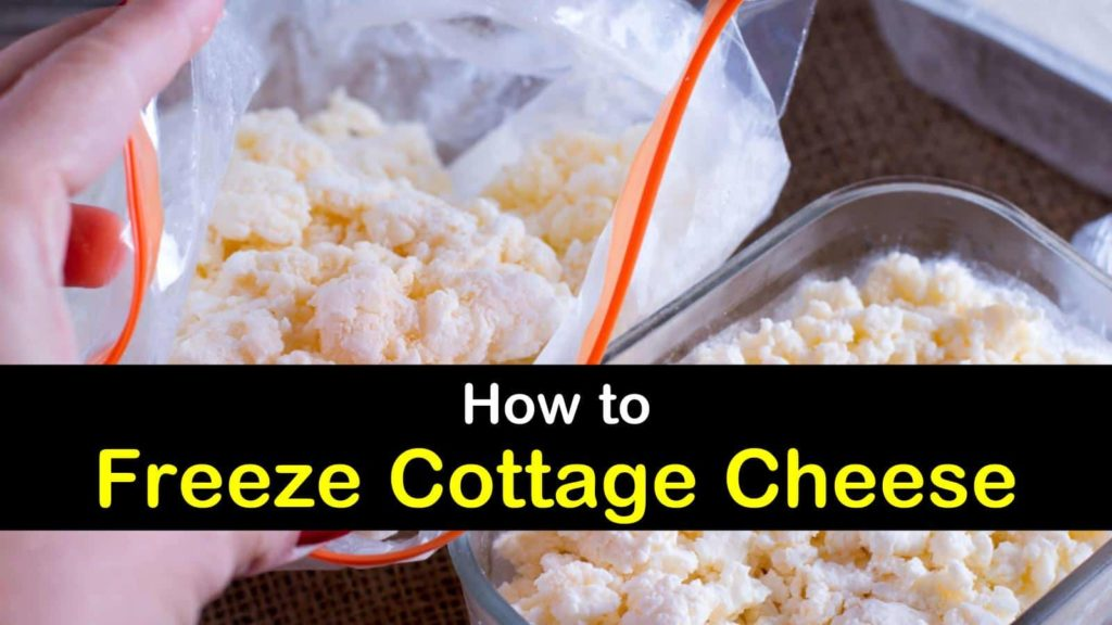 Can You Freeze Cottage Cheese; Can Cottage Cheese Be Frozen - How To Freeze Cottage Cheese