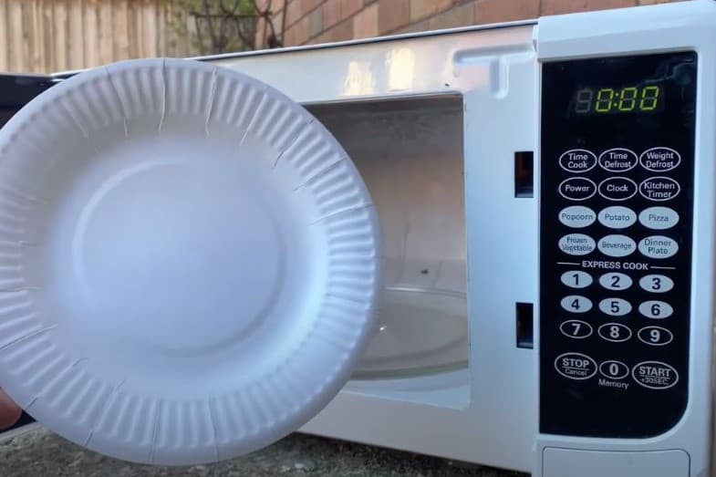 Can You Put Paper Plates In The Microwave