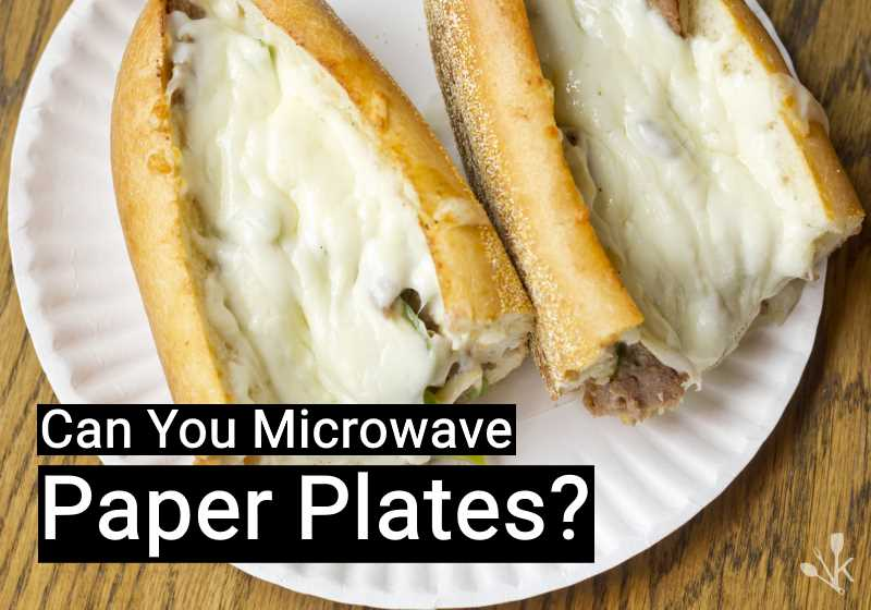 Can You Put Paper Plates In The Microwave; Can You Put Paper Plates In The Microwave
