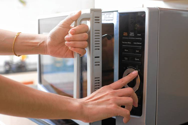 Can You Put Paper Plates In The Microwave; Testing Microwave Safety of A Plate At Home