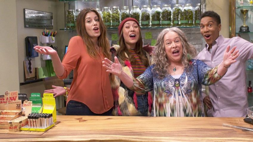 Disjointed Season 3; Will There Be A Disjointed Season 3